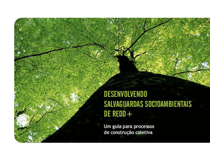 desenvolvendo-salvaguardas-socioambientais-de-redd