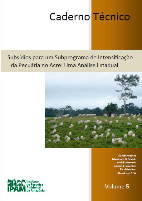 subsidios_para_um_subprograma_de_intensificacao_pecuaria_acre