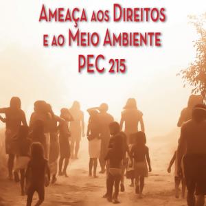 2015-12-02 17_40_24-pec_215_ameaça_aos_direitos_e_ao_meio_am (1).pdf