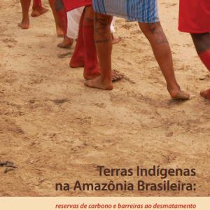2015-12-02 17_45_19-terras_indígenas_na_amazônia_brasileira_.pdf
